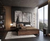 Кровать Nature Люкс , с подъемным механизмом (Дуб табачный Craft-Черный)
